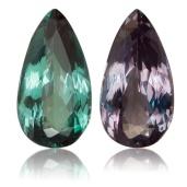 alex stones