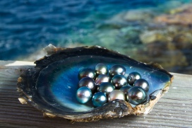 dark pearls
